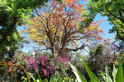 Guadalajara-trip-nature